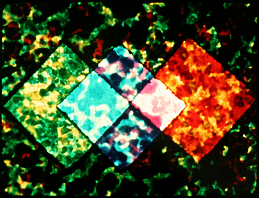 https://mdfilmfest.com/wp-content/uploads/3-early-abstractions_still.png